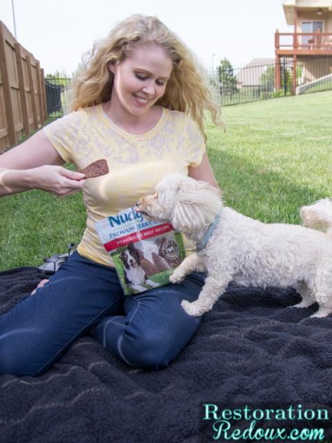 Nudges-Dog-Treats