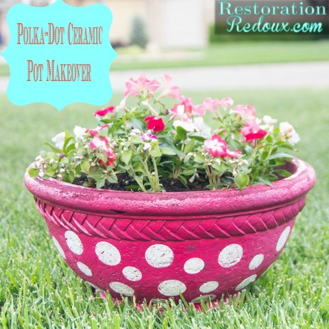Polka-Dot Ceramic Pot Makeover