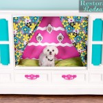RetroTV-Doghouse