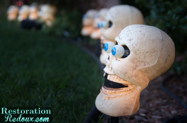 Skull-lights