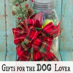 Mason Jar Gift for the Dog Lover